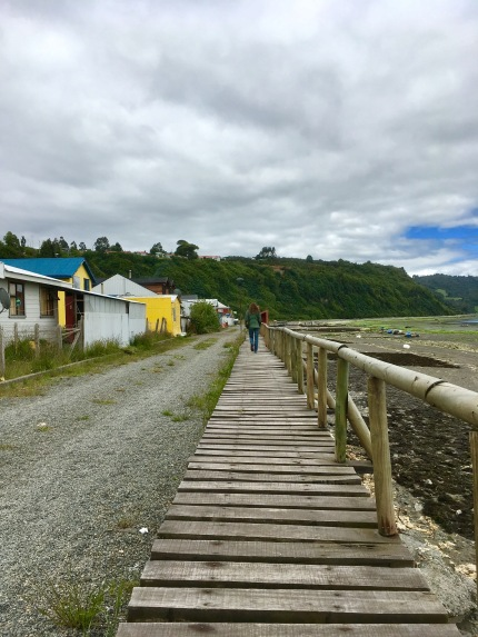 Boardwalks & seaweed drying on the beach. Chiloe, Chile. Photo by Michael Hatch.